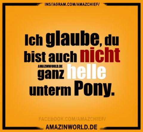 Ich glaube, du bist auch nicht ganz helle unterm Pony.